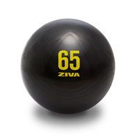 Bola medicinal - Gym Ball CORE FIT BALL Ziva - Fitnessboutique