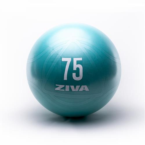 Bola medicinal - Gym Ball Ziva CORE FIT BALL